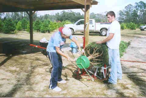Bozeman Christmas Tree Farm Tour